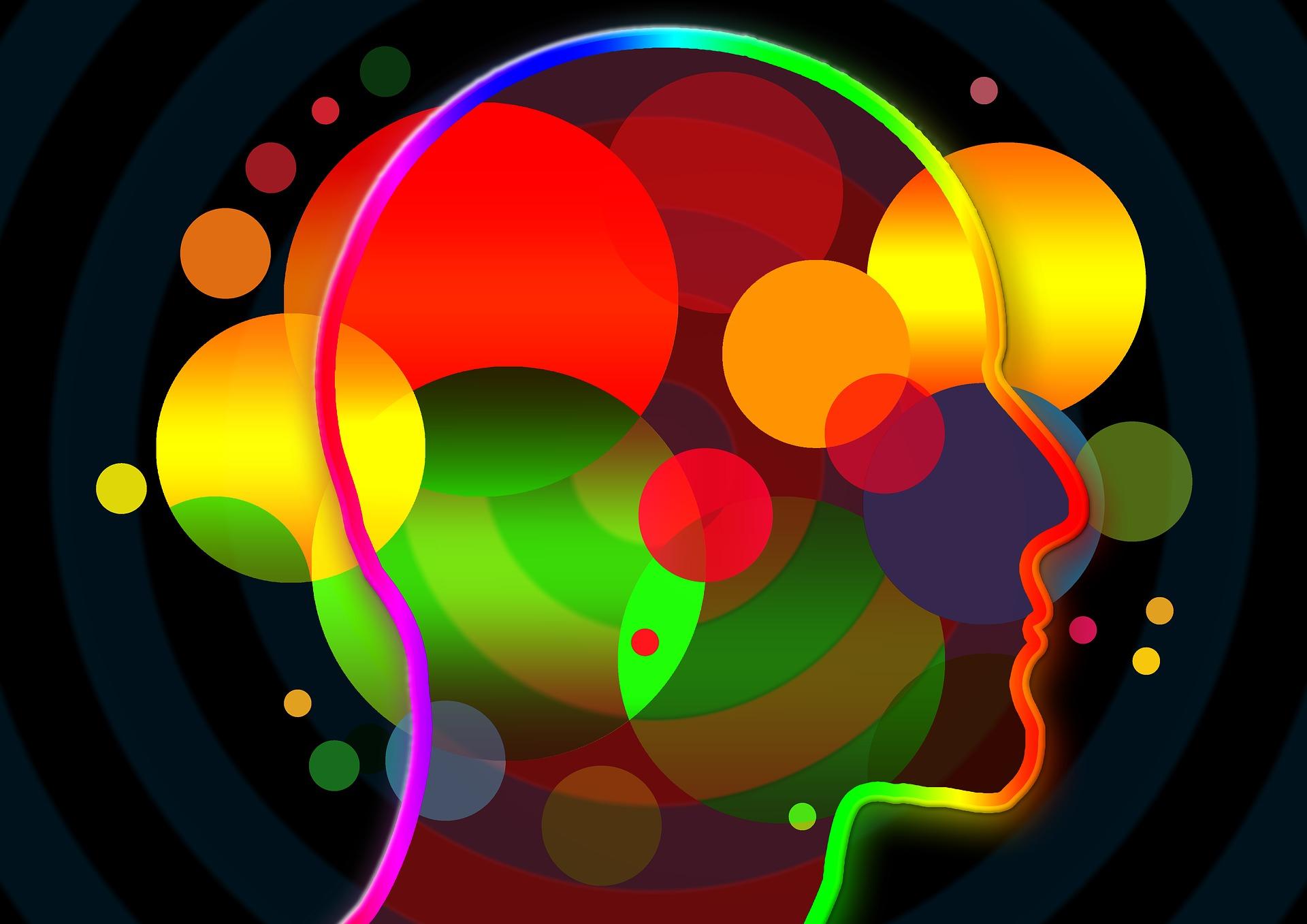 Mechanizmy Psychologiczne W Kampaniach Społecznych Watch It