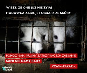 #czasnazakaz - ilustracja kampanii fundraisingowej stowarzyszenia Otwarte Klatki. Środki zbierane były na kampanię lobbingową zabiegająca o zakaz hodowli zwierząt futerkowych